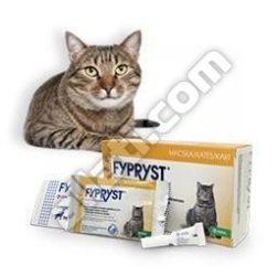 Fypryst  0,5 ml macska 1 pipetta  Hatóanyag: Fipronil  , Internettes rendelésre .