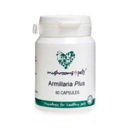 Armillaria Plus (450mg) 60db ( Gyógygomba )